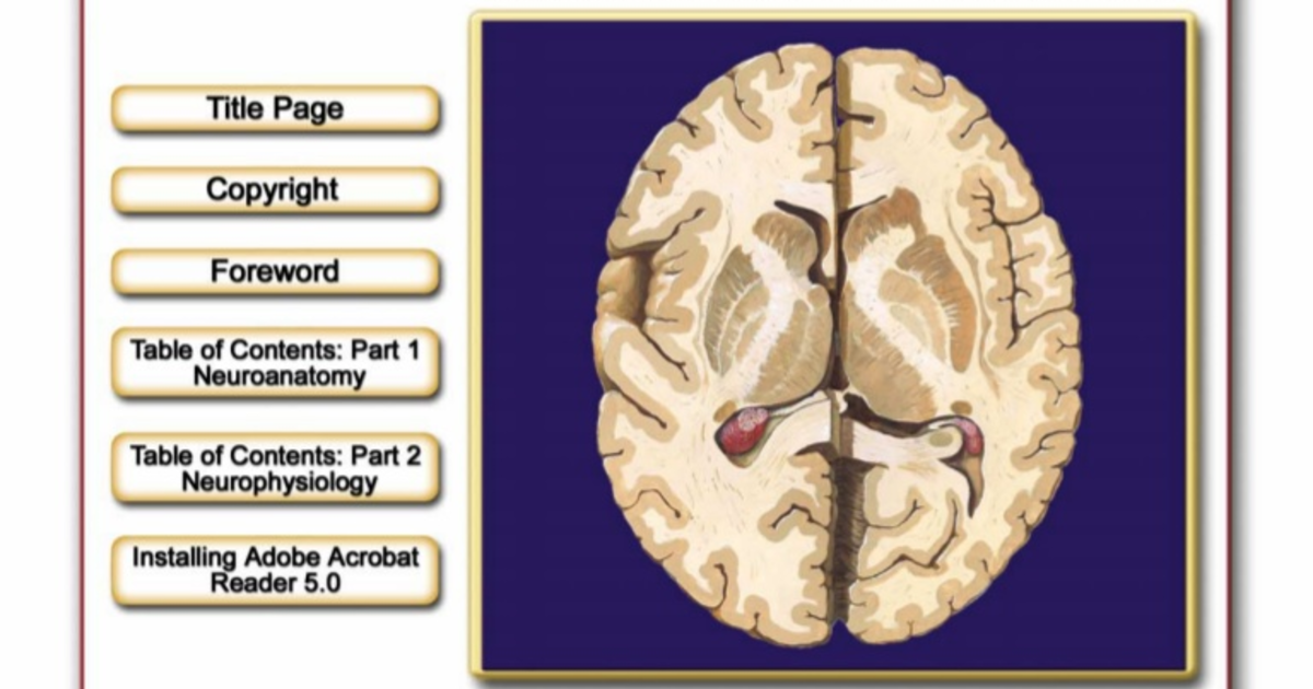 Netter atlas of neuroanatomy and neurophysiology on Meducation