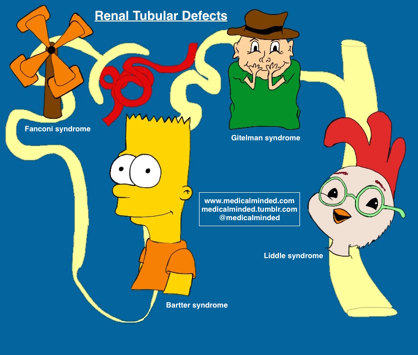 Renal Tubular Defects - Site of Condition