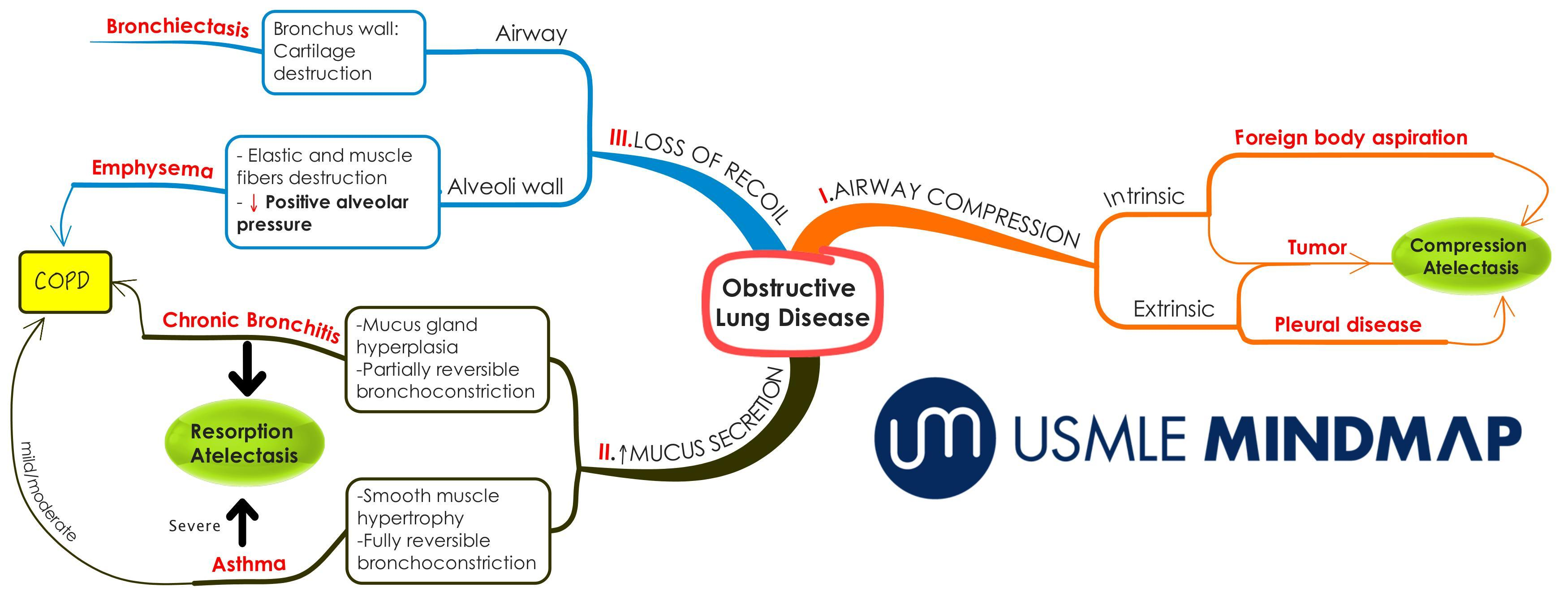 Obstructive Lung Disease Mind Map
