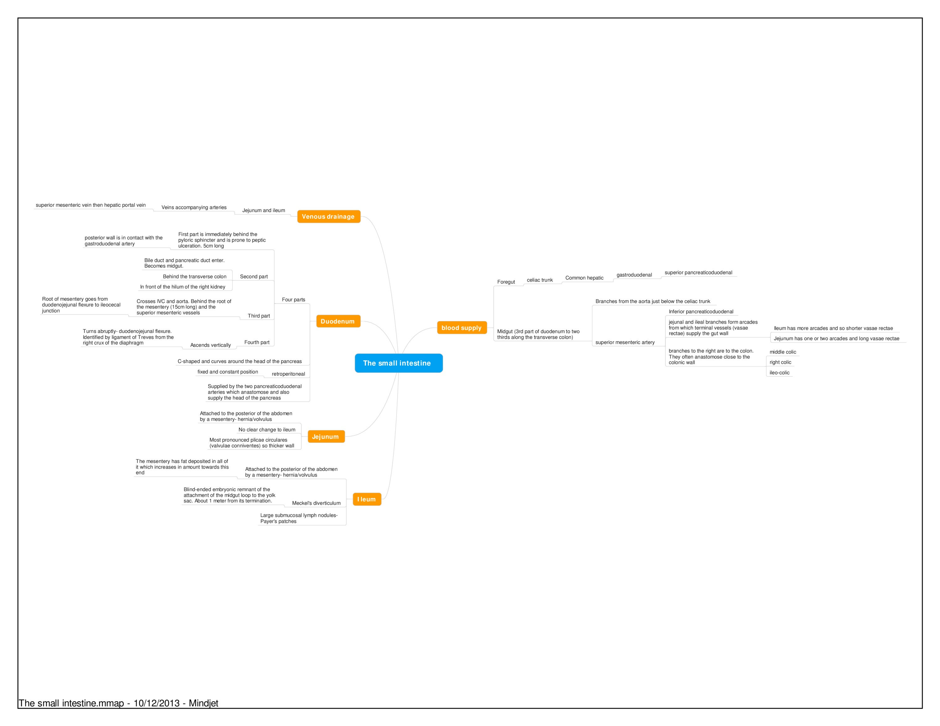 Mindmap- The small intestine