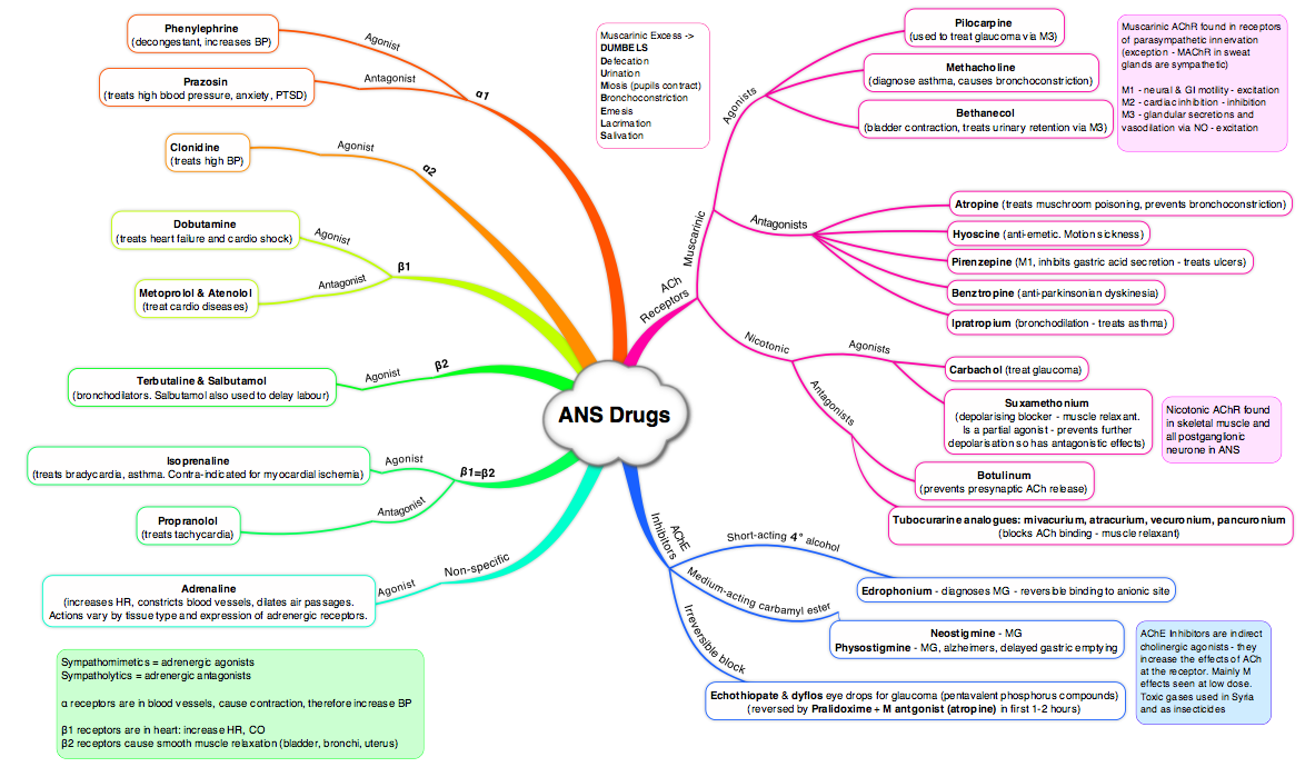 ANS Drugs - Mind Map