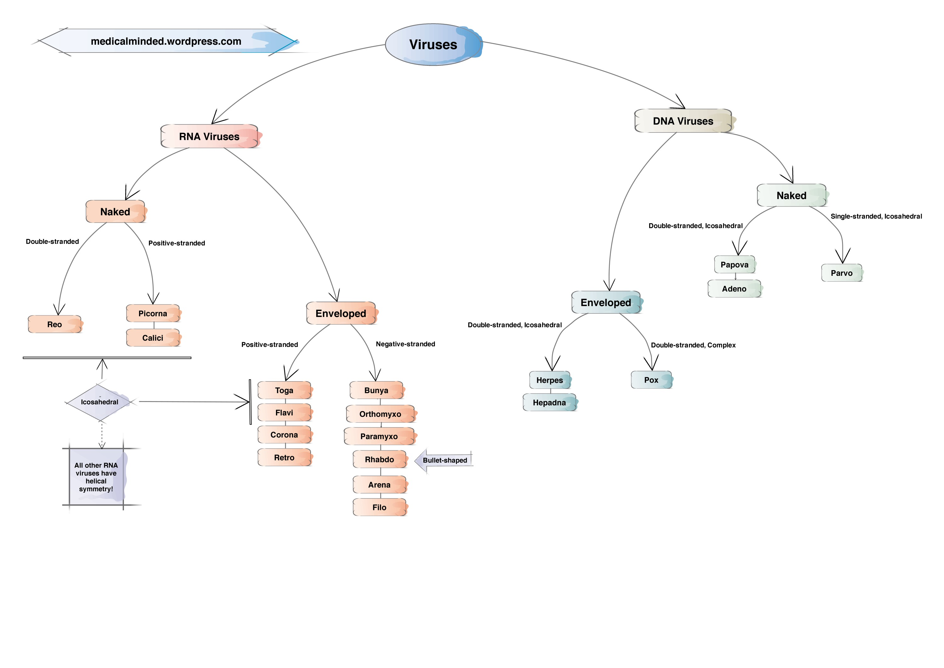 Virus Mind Map